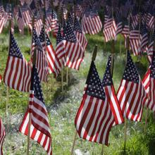 American flags on display to commemorate those that died on 09-11-2001.
